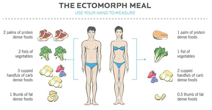 What Should I Eat For My Body Type? Ectomorph