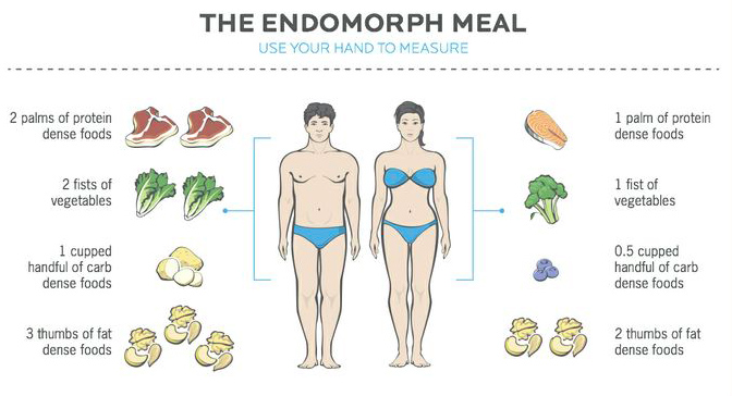 What Should I Eat For My Body Type? Endomorph